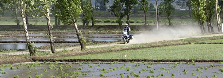 Helge riding through the rice paddies in China.